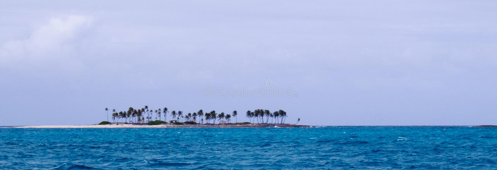 Tropical island isolated in the middle of the water. Panoramic photo: Tropical island with a lot of palm trees isolated in the middle of the water near Nassau in stock photos