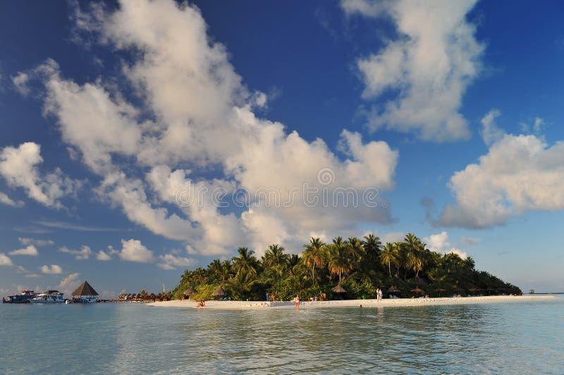 Tropical Island, the maledives stock photo