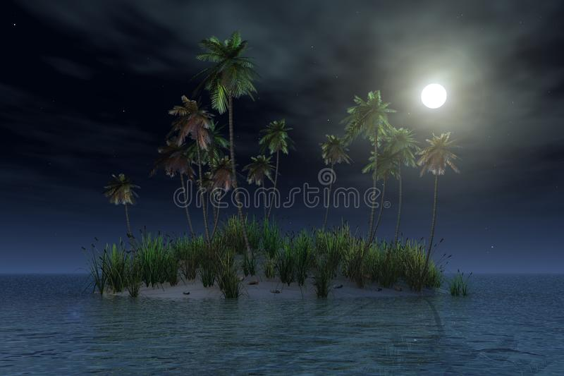 Tropical island by night vector illustration