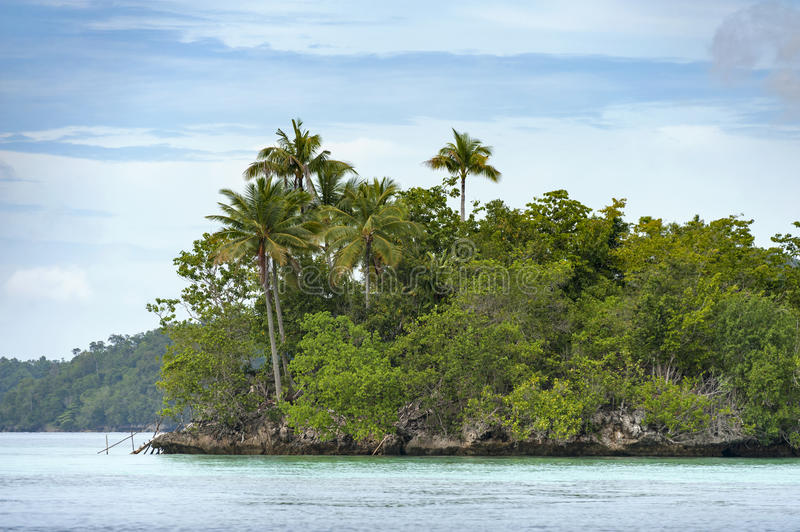 Tropical island in the Raja Ampat area of Indonesia. A small, uninhabited island is a typical sight in the Raja Ampat area. Palm trees and beautiful clear water royalty free stock photography