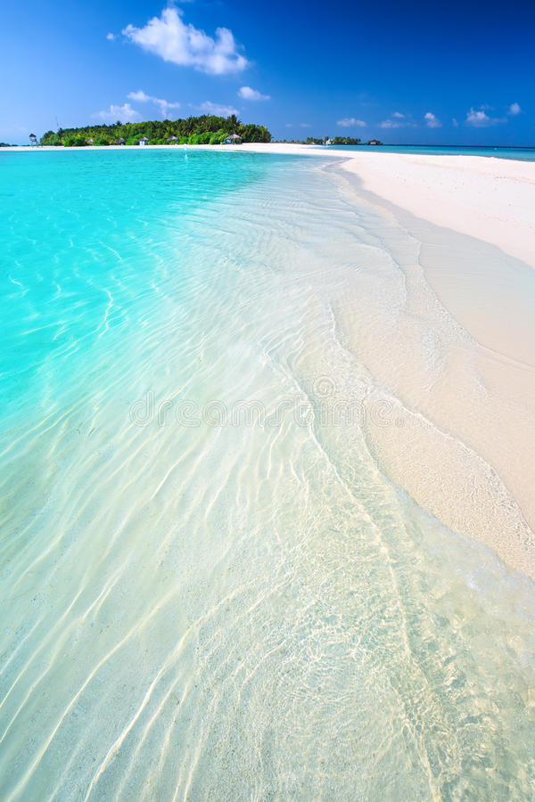 Tropical island with sandy beach with palm trees and tourquise clean water in Maldives. View to Tropical island with sandy beach with palm trees and tourquise stock image
