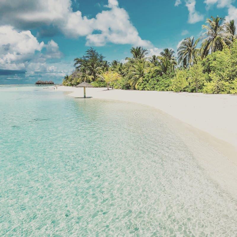 Beautiful Vintage Beach Landscape. Tropical Nature Scene