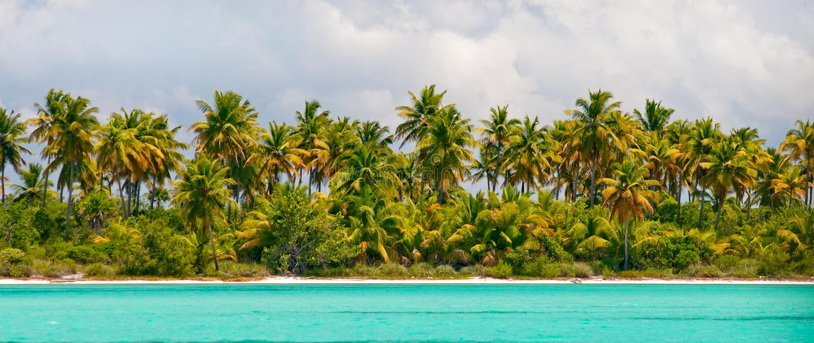 Tropical island - sea, sky and palm trees royalty free stock photos