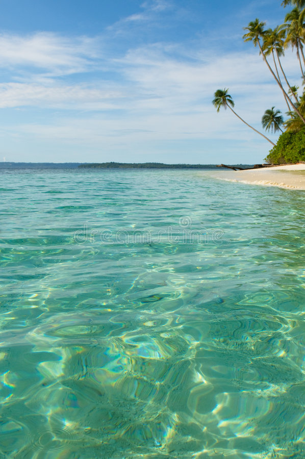 Tropical island - sea, sky and palm trees royalty free stock photography