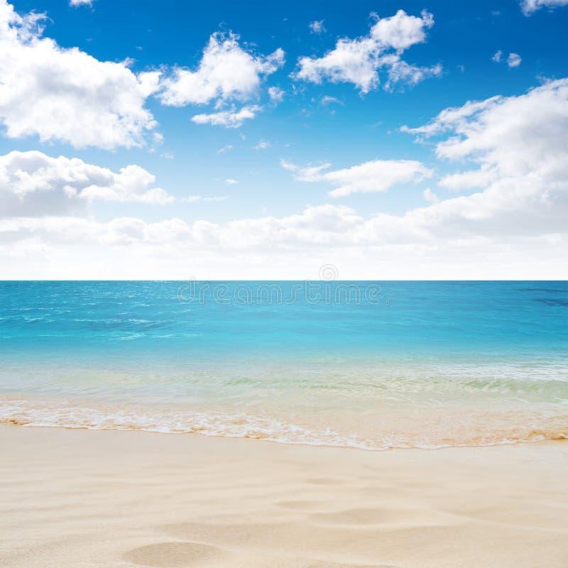 Tropical Island Beaches: Tropical Island Summer Beach Stock Image