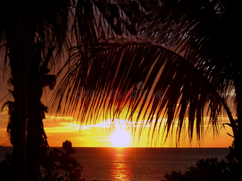 Tropical Island Sunset Stock Images