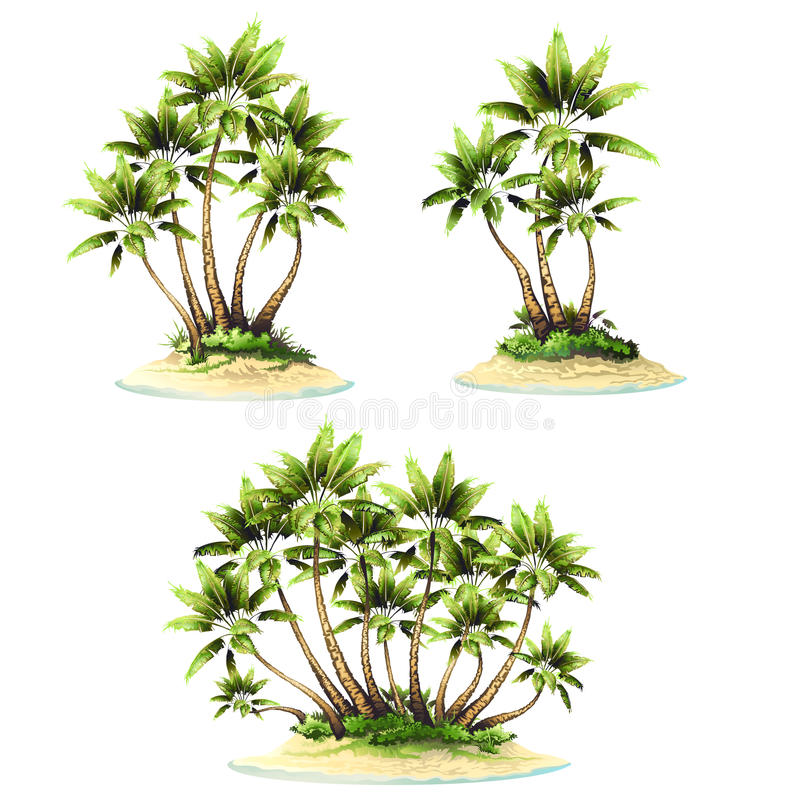 Tropical island vector set. Tropical island with palm,vector drawing royalty free illustration