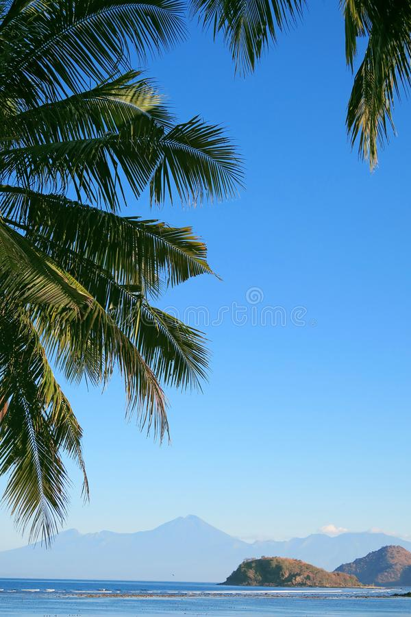 Tropical island view: ocean, mountains and blue sky in palm leaves frame. Sumbawa island, Indonesia.  royalty free stock image