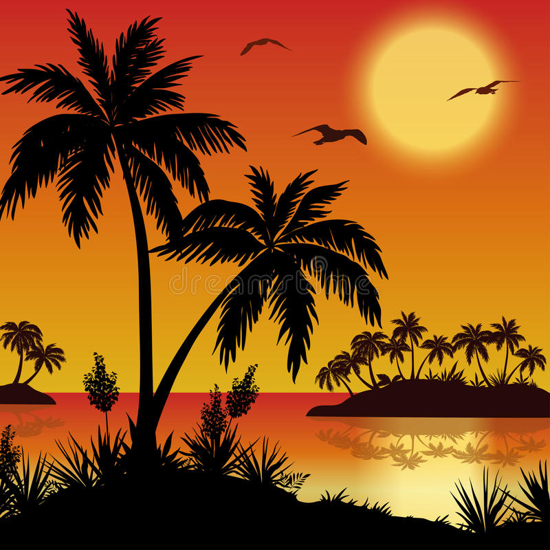 Palm Tree Island: Tropical Islands, Palms, Flowers And Birds Stock Vector