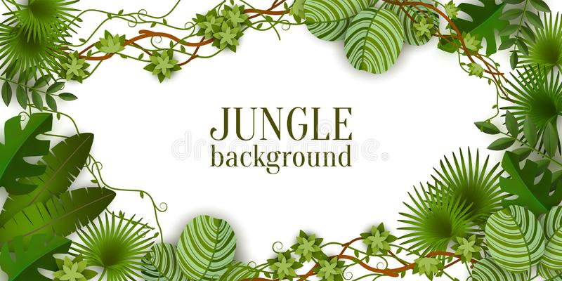 Tropical jungle exotic lianas vine and palm leaves vector illustration isolated. royalty free illustration