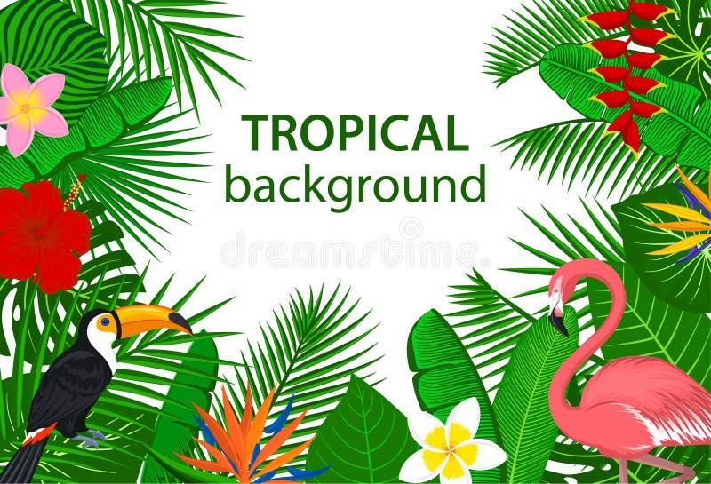 Tropical jungle rainforest plants flowers birds, flamingo, toucan background. vector illustration