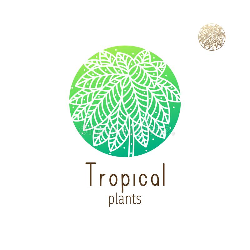 Tropical jungle. Tropical plant logo. Vector emblem herb in a circle on isolated background. Abstract round badge for design of natural products, flower shop vector illustration