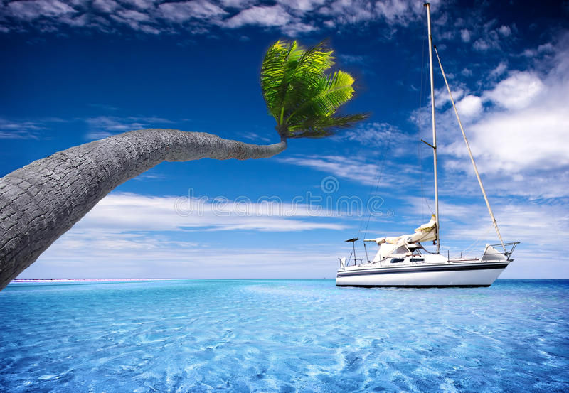 Tropical Lagoon royalty free stock photo