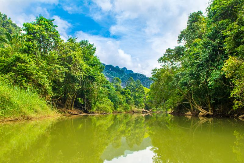 Tropical landscape of a jungle in Thailand. Tropical landscape of a jungle river in a park Khao Sok, Phuket, Thailand royalty free stock photos