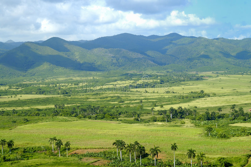 Download Tropical Landscape With Mountains Stock Image - Image of foliage, escambray: 8112805