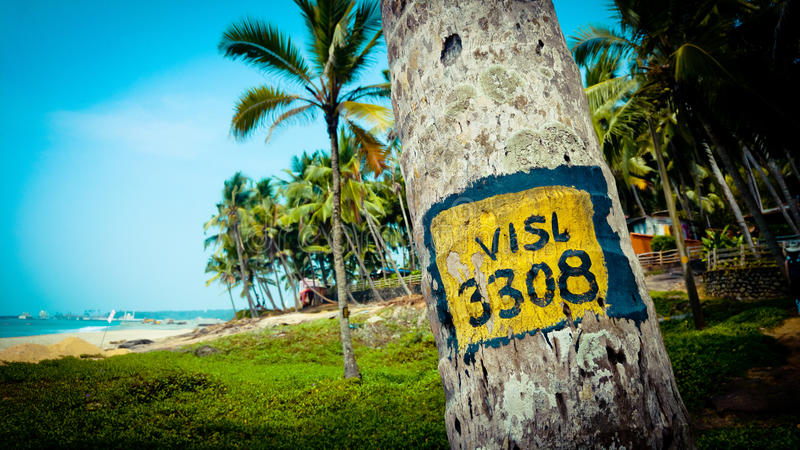 Tropical landscape with palm trees at ocean background. Palm trees at the ocean coast of India Kerala stock photos