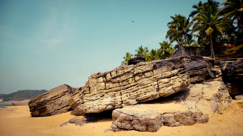 Tropical landscape with rock and palm trees at background. Kerala India rock sand and palm trees at ocean coast stock photography
