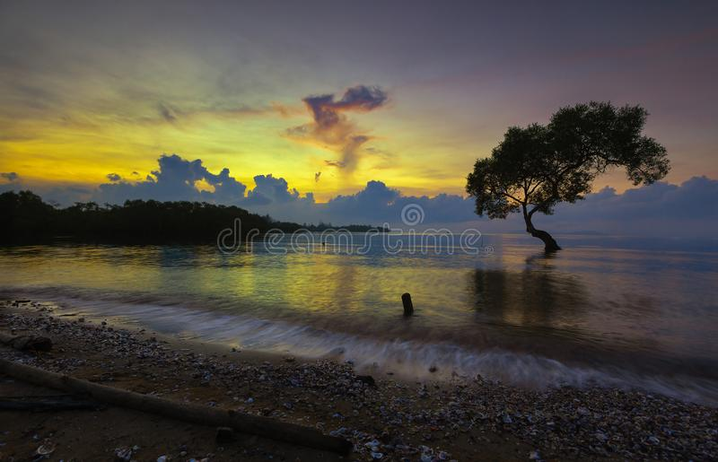 Tropical landscape with tree and sea ,Sunrise in the morning at bay in Chumphon,Thailand royalty free stock photos