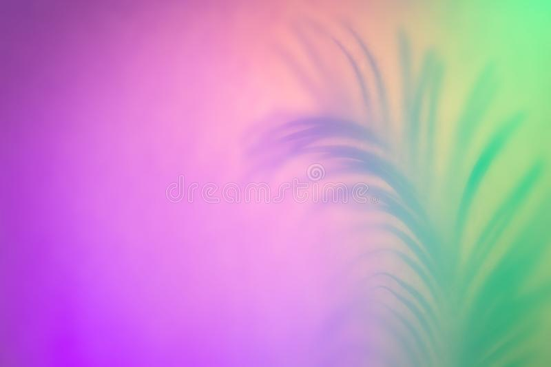 Tropical Leaf shadow in trendy duotone neon backlight. Abstract background in purple green colors stock photography