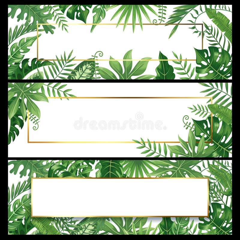 Tropical leaves banners. Exotic palm leaf banner, natural coconut palms branch frames and jungle plants vector royalty free illustration