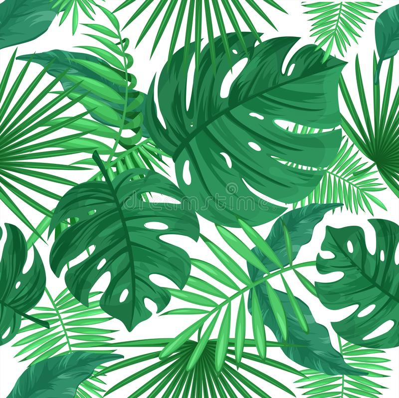 Tropical leaves color vector seamless pattern, jungle plants stock photo