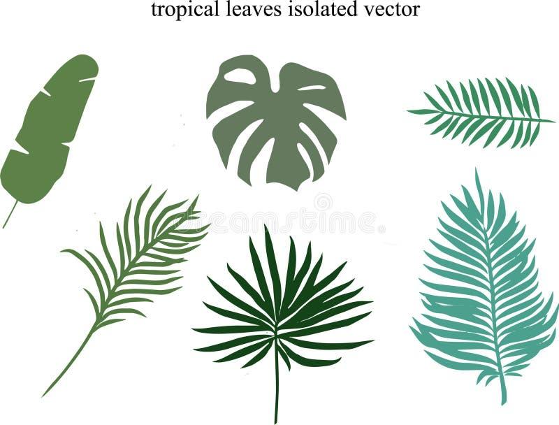 Tropical leaves design elements. stock illustration