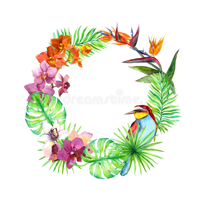 Tropical leaves, exotic bird, orchid flowers. Floral wreath. Watercolor. Tropical leaves, exotic bird and orchid flowers. Floral wreath. Watercolor royalty free illustration