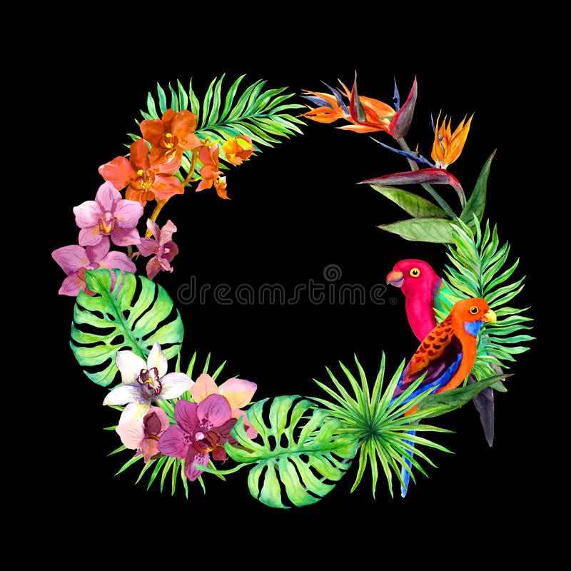 Tropical leaves, exotic birds, orchid flowers. Border wreath. Watercolor. Tropical leaves, exotic birds and orchid flowers. Border wreath. Watercolor vector illustration