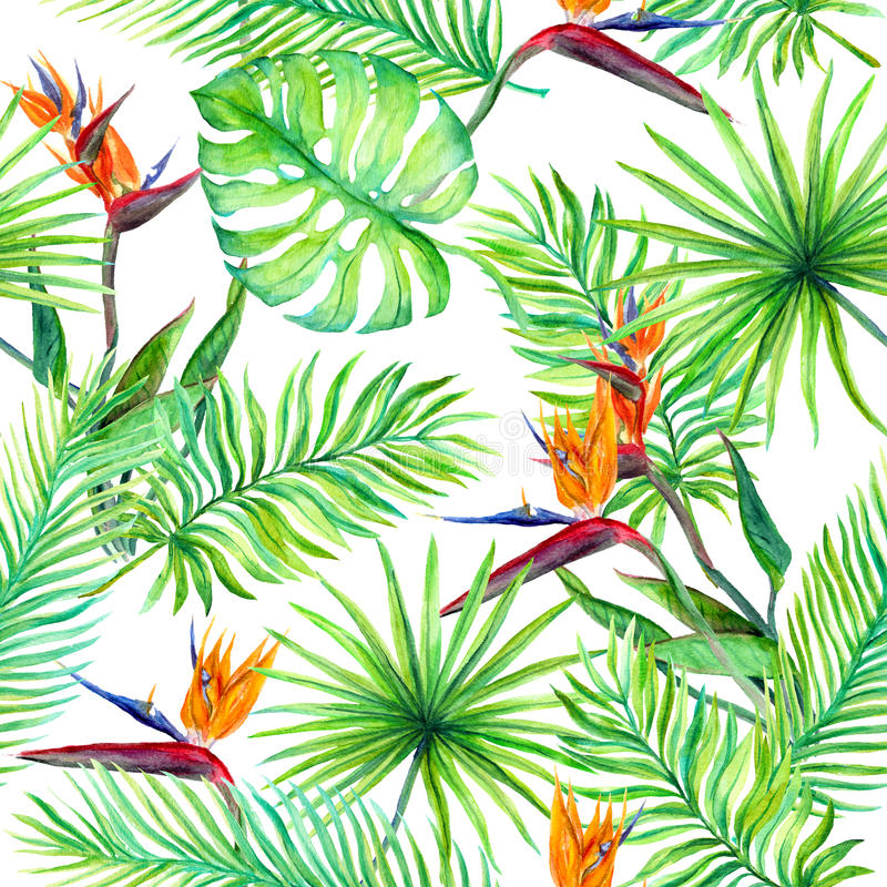 Tropical leaves, exotic flowers. Seamless jungle pattern. Watercolor stock illustration