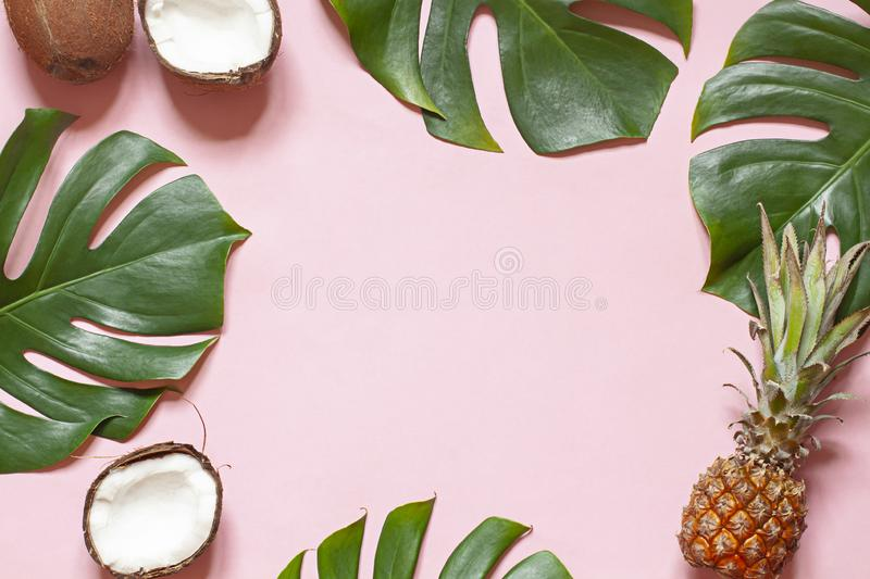 Tropical leaves and exotic fruits summer concept frame on the pink background. royalty free stock image