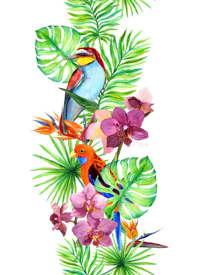 Tropical leaves, exotic parrot bird, orchid flowers. Seamless border. Water color frame royalty free illustration