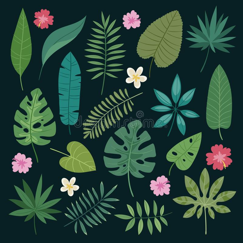 Tropical leaves flowers vector tropic hibiscus flowering plant and leaf foliage palm or banana tree in jungle exotic vector illustration