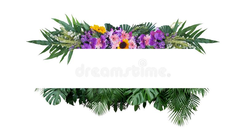 Tropical leaves foliage plant bush with colorful flowers floral arrangement nature frame banner on white background royalty free stock image