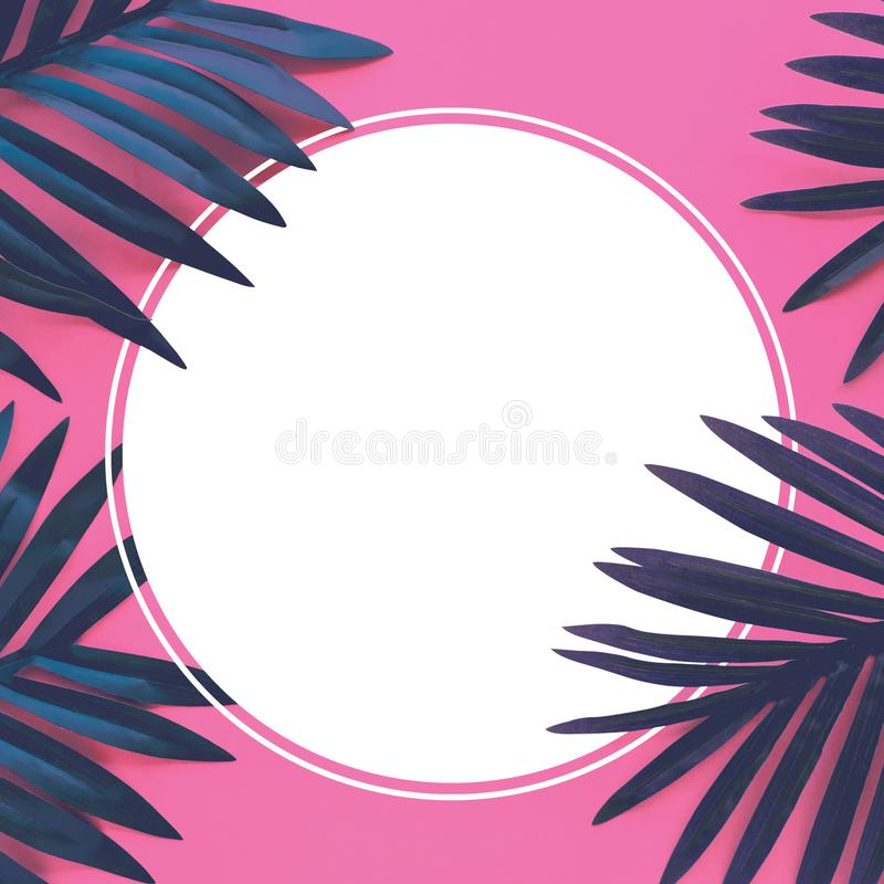 Tropical leaves foliage plant close up with color copy space background.Nature and summer concepts ideas royalty free illustration
