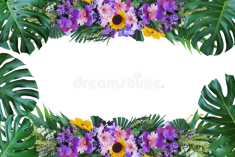 Tropical leaves Monstera, fern and lady palm with colorful flowers floral arrangement nature frame layout on white background royalty free stock images