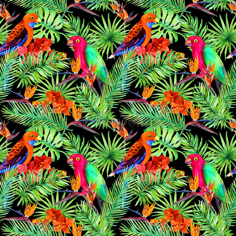 Tropical leaves, parrot birds, exotic flowers. Seamless jungle pattern on black background. Watercolor stock illustration