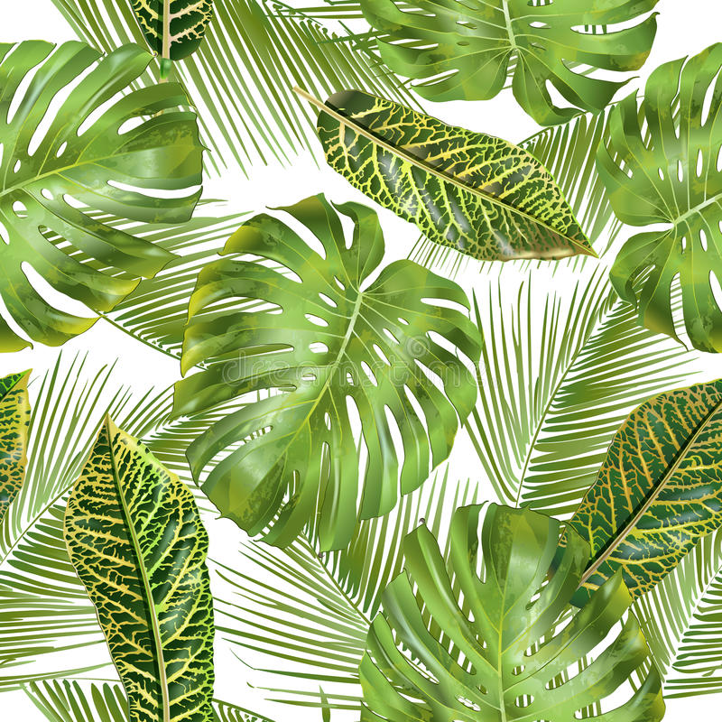 Tropical leaves pattern vector illustration