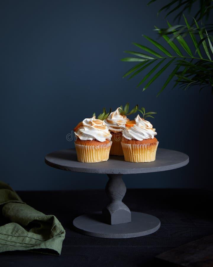 Free Tropical Lemon Oranges Cupcakes On Dark Stock Image - 187214591