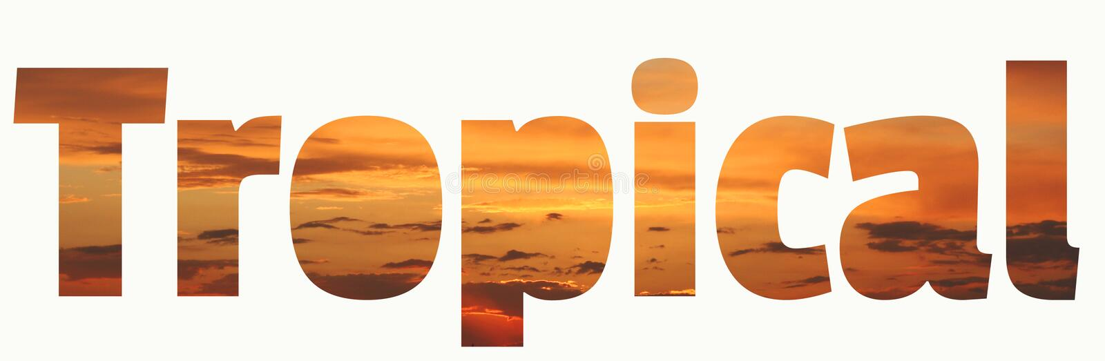 Tropical lettering. Tropical sunset vivid orange brown and coral background royalty free stock image