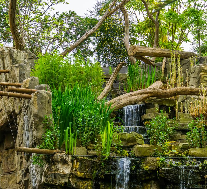Tropical looking waterfall with many plants, exotic garden architecture stock photos