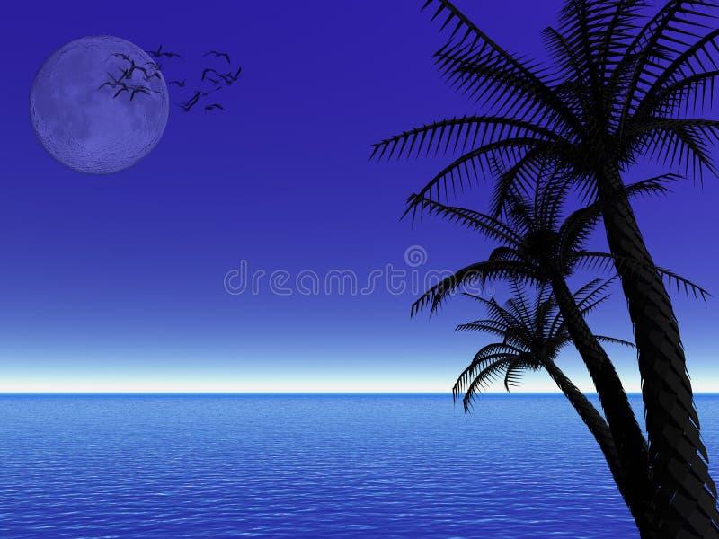 Tropical moon night vector illustration