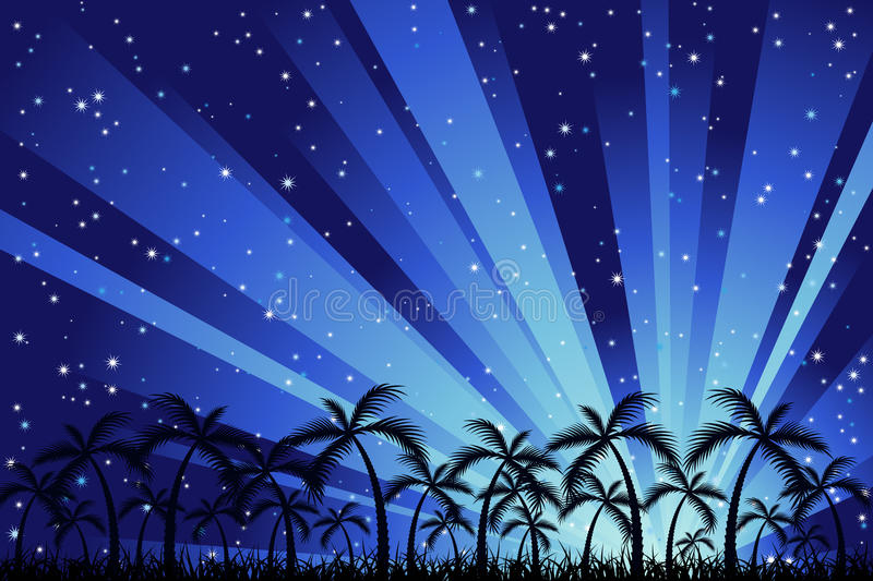 Download Tropical Night Royalty Free Stock Photo - Image: 12861575