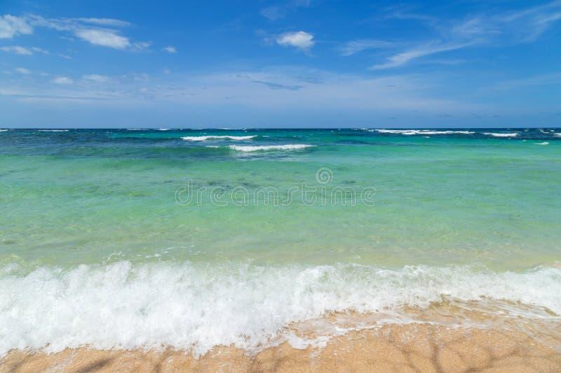 Beach in Panama royalty free stock photo