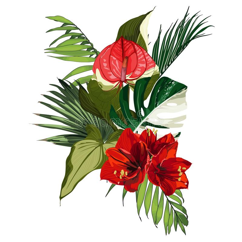 Free Tropical Palm Branches And Exotic Leaves, Spathiphyllum, Amarylis Red Flower Composition Over White Background. Royalty Free Stock Image - 159872766