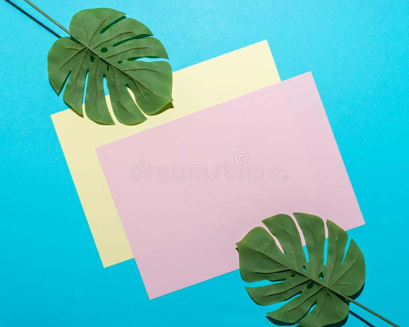 Tropical palm leaf and colorful paper card on bright blue background. Minimal summer composition. Flat lay royalty free stock photo