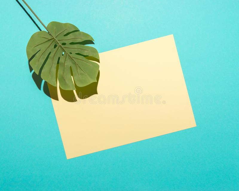 Tropical palm leaf and yellow paper card on bright blue background. Minimal summer composition. Flat lay royalty free stock photography
