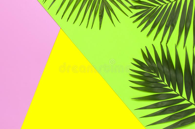 Tropical palm leaves on bright yellow green pink background. Flat lay, top view, copy space. Summer background, nature. Creative stock image