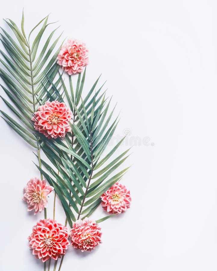 Tropical palm leaves and exotic flowers on white desktop background, top view, creative layout with copy space. Border stock image
