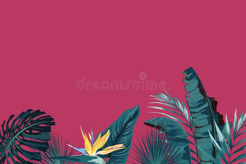 Tropical palm leaves, jungle leaf, monstera and strelitzia flower. Vector exotic frame, floral elements isolated, Hawaiian bouquet. For greeting card, wedding royalty free illustration