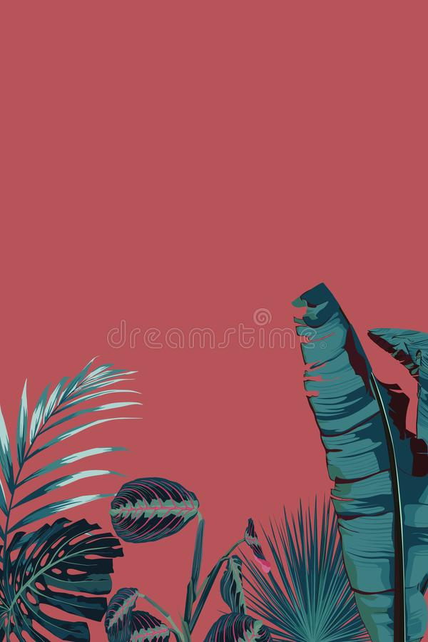 Tropical palm leaves, jungle leaf. Vector exotic frame, floral elements isolated. Hawaiian bouquet for greeting card, wedding, wallpaper, sale vector illustration